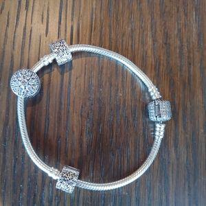 Pandora Christmas Bracelet Set